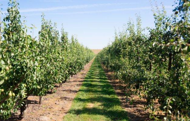 Openstelling agrarisch natuurbeheer